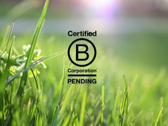 We accept the B Corp challenge!