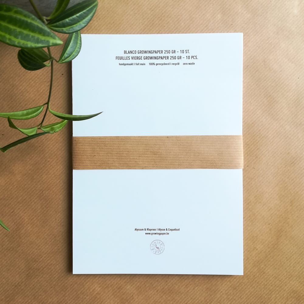 Papier Ensemencé Pour Tous Vos Projets Creatifs