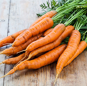carrots from growing paper
